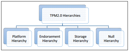 tpm hierarchy