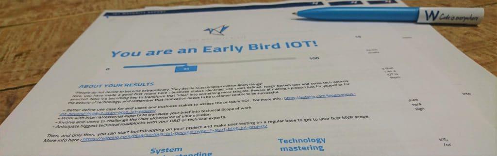 IoT maturity quizz report